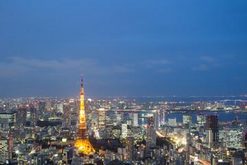 Skyline of Tokyo, Tokyo Tower at Night, Japan.