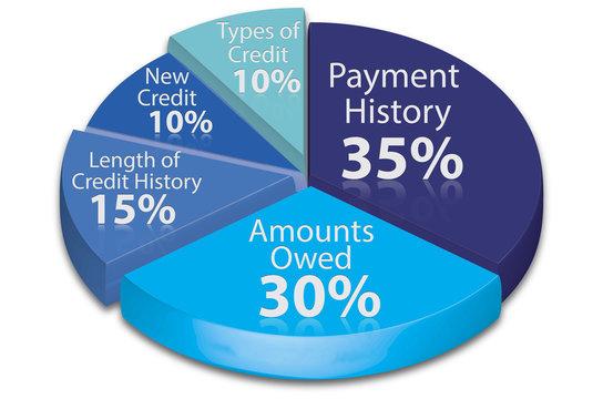 Calculate credit score pie chart