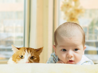 unny caucasian newborn toddler baby boy with red cat