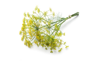 Wall Mural - Dill isolated on white