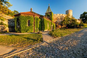Belgrade fortress and Kalemegdan park Fototapete