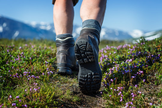 Hiking Boots between mountain flowers