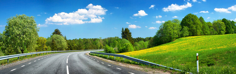 Asphalt road and dandelion field
