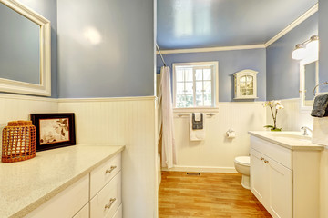 Bathroom with lavender and white wall trim