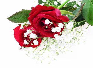 薔薇とカスミソウ