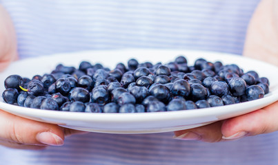 plate with blueberries in hand, horizontally