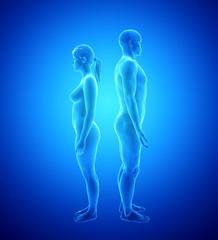 Human Body Anatomy - Man and Woman