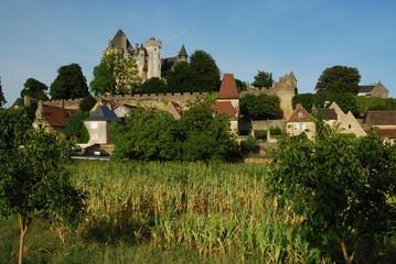 Château de Montfort, Dordogne, France