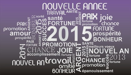 nuage de mots 2015