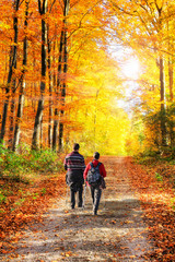 Wall Mural - Gemeinsam wandern im Herbstwald