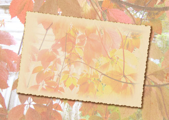 Stylized autumn background with frame for text