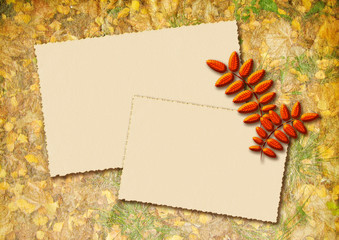Stylized autumn background with two frames for text