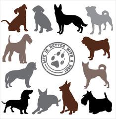 Dogs set design. Vector illustration.