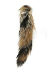 Fuchsschwanz