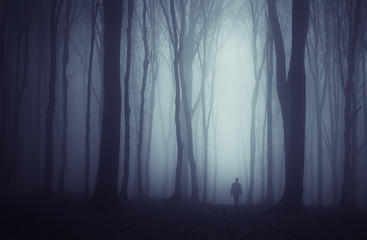 spooky dark forest with mysterious man walking on a path Wall mural