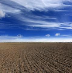 Autocollant pour porte Sauvage ploughed field