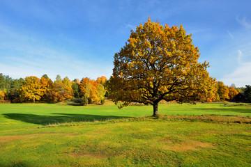 Fototapeta krajobraz wiejski , jesień obraz