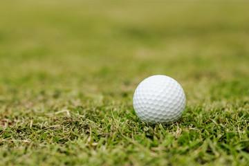 Golf balls in grass