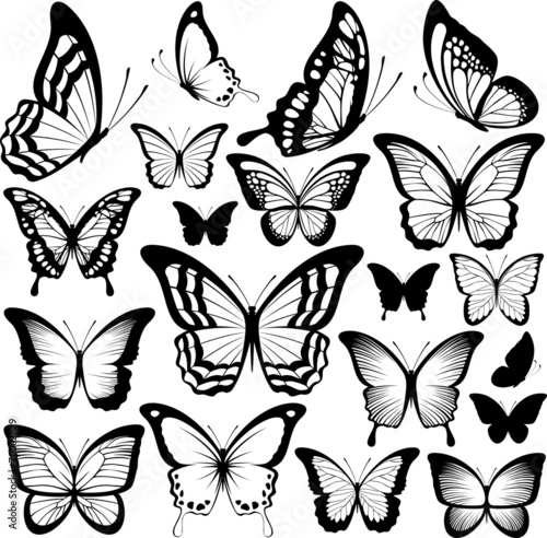 """""""butterflies black silhouettes"""" stock image and royalty"""