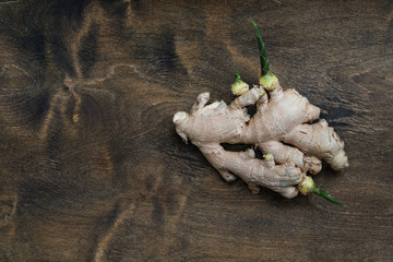 ginger root with young green sprouts on wooden background