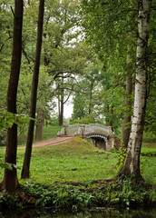 View of an old bridge  between trees in the park