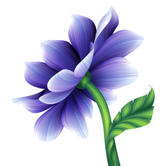 abstract blue violet flower illustration isolated on white