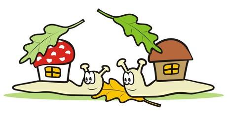snails, couple