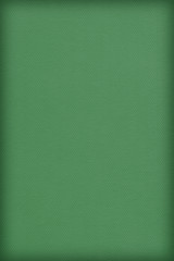 Pastel Paper Kelly Green Coarse Vignette Grunge Texture