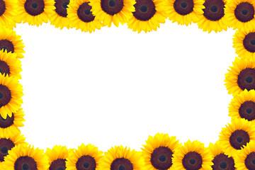 A frame made of sunflower heads