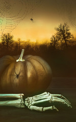 Pumpkin with skeleton hand and spider webs