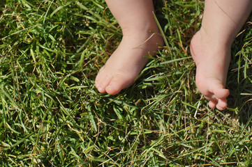Baby feet on grass