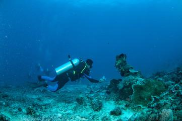 Diver, coral reefs, Gili, Lombok, Nusa Tenggara Barat underwater