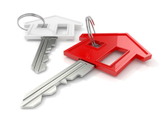 house keys. housing concept isolated