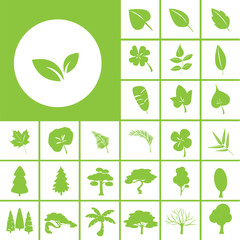 leaf and tree icon
