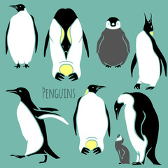 black and white penguin set