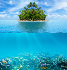 Underwater coral reef seabed and water surface with tropical isl