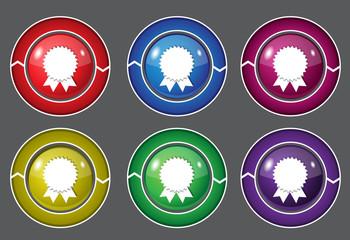 Medal Circular Vector Colorful Web Icon Set Button