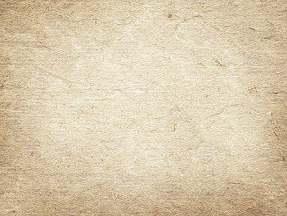 Light brown recycled paper texture.