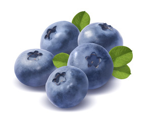 Five blueberries isolated on white background