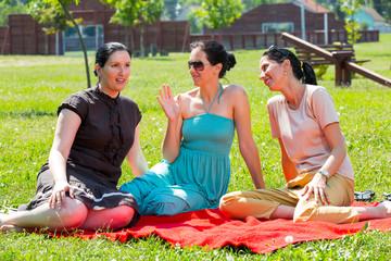 Picnic fun. Three girls having fun at a picnic.