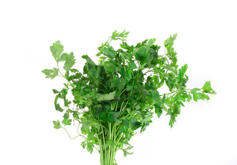 Bunch of parsley on a white.