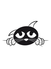 Katze süss traurig