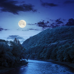 mountain river near the forest at night