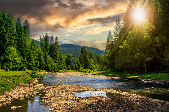 forest river with stones in mountains at sunset