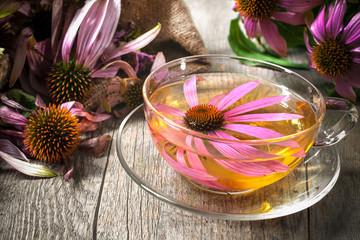 Herbal Tea. Echinacea purpurea Wall mural