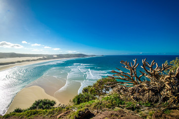 Foto op Canvas Australië Wonderful Bay on Fraser Island