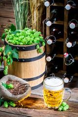 Golden beer in the gourmet cellar