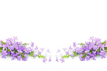 Wall Mural - Violet Ixora