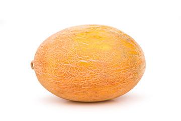 ripe juicy melon uncut
