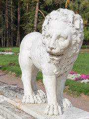 marble sculpture of a lion standing